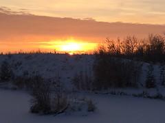 A glorious ending to a lovely snowy day (+4) (peggyhr) Tags: peggyhr autumn snowy wintry sunset iphone bluebirdestates alberta canada