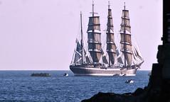 Sedov quittant la rade de Sète vers le couchant (guy dhotel) Tags: voilier quatremâts sedov boats