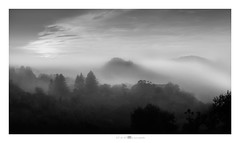 clouded thoughts (paolo paccagnella) Tags: phpph© paccagnellapaolo photo primephoto bw blackandwhite bn ass ambiente activity autumn territorio tree tramonto trees flickr fog fotografia forest black biancoenero landscape paesaggio zen sky sunset eos5dm3 veneto italia colli euganei padova icemicrosoft