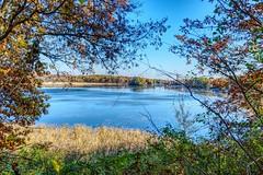 A Fine Fall 6 (Herculeus.) Tags: autumn fall trees leaves color mi usa kensingtonmetropark hiking walking landscape outside outdoor outdoors nature 2017 november