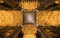 The cathedral (por agustinruizmorilla) Tags: cathedral la catedral sevilla seville 16th century siglo xvi saint mary santa maria agustinruizmorilla