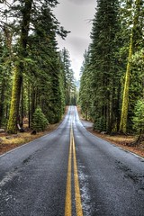 Volcano Road (Rik Tiggelhoven Travel Photography) Tags: lassen volcanic national park np nps service volcano road way trees moss nature natuur outdoor landscape landschaft landschap landskap paysage paisagem paisaia paisaje paisaxe hdr canon eos 6d fullframe full frame california usa america amerika ef24105mmf4lisusm rik tiggelhoven travel photography