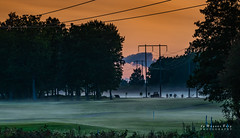 Hazy wiring (m3dborg) Tags: landscape haze fog nature sunset sky red silhouette trees tree wires wiring electricity outdoor outdoors grass grassland