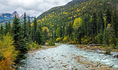 Animas River valley - San Juan Nat. Forest, Colorado, USA 10 (Russell Scott Images) Tags: autumn fall colours animasrivervalley sanjuannationalforest heritage durangosilvertonnarrowgaugerailroad trainline colorado usa russellscottimages