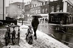 Snowing (_Okobe_) Tags: