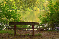 Nice view (Vak Photos) Tags: bench nature pond lake trees banc water étang lac