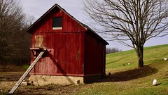 Down on the Farm...Edited (R.A. Killmer) Tags: farm rural mood tone pennsylvania chickens red coup beauty serene pastoral sky