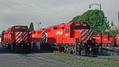 CP 3002 and 3001 (GP38ACs) at Nanaimo, BC on June 3, 1992. (railfan 44) Tags: canadianpacific vancouverisland