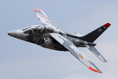 AT-29 (IanOlder) Tags: belgian air force alpha jet training aircraft military aviation belgium florennes at29
