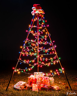 Photographer's Christmas Tree