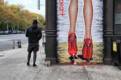 Stanton Street (erichudson78) Tags: usa nyc newyorkcity manhattan lowereastside stantonstreet streetart streetphotography canoneos6d canonef24105mmf4lisusm dog chien scènederue peinturemurale octobre october automne fall animal heels hautstalons chrystiestreet