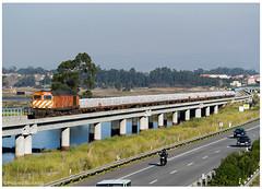 Aveiro 26-12-14 (P.Soares) Tags: 1960 1973 comboio cp carga mercadorias train trains tren comboios cpcarga caminhodeferro diesel
