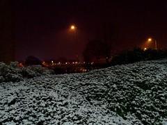Lakeside (stillunusual) Tags: lakeside manchester cheadleroyal evening night dark snow snowing urban urbanscenery urbanlandscape cityscape city mcr england uk 2017