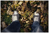 (Silverio Photography) Tags: converse fall autum leaves canon 60d 24mm pancake primelens topaz adjust photoshop elements hdr vignetting