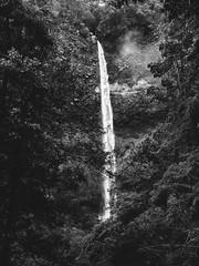 Salto del Claro (cfculhane) Tags: saltodelclaro advrider chasingtheblackandwhitedog ricohgr waterfall salto chile pucón pucon cascada