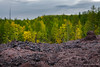Life so close to mass destruction (fournatz) Tags: paysageslandscapes forêtforest vertgreen jauneyellow automneautumn rocherrock lumiere cailloustone couleurscolor lavelava nuagesclouds pleinjourdaytime tolbatchik paysages magenta kamchatka volcanvolcano lieu typedephoto saison kraïdukamtchatka russie ru