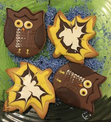 IMG_4589_Cookies (sdttds) Tags: pictureoftheday pod 365 365in2017 2017 2017yip project365 cookies owls leaves food dessert cute 10nov2017