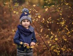Nicholas (Aga Wlodarczak) Tags: boy boys child children portrait outdoor outdoors autumn forest naturallight 135mm 135mmf2 canon 6d