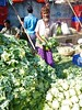 A mountain of cauliflowers! (gerrypopplestone) Tags: port loading boats cauliflowers vegetables selling markets trading