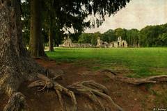 L'abbaye de Vauclair (Isabelle Photographies) Tags: isabelle deschamps aisne picardie abbaye vauclair texture