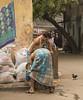 (Flora Eiffel) Tags: canon 80d canon80d street rue inde india kolkata calcutta