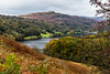 Lakeland (Keith in Exeter) Tags: lakeland lakedistrict nationalpark grasmere lake water mere mountain woodland forest tree hawthorn bush berry bracken fern autumn fall cloudy sky cumbria england outdoor landscape grass river