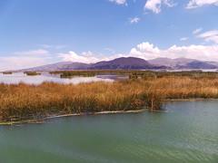 20171012_185733 (massimo palmi) Tags: perù peru titicaca uro uros lagotiticaca laketiticaca floatingislands floating islands isolegalleggianti puno totora