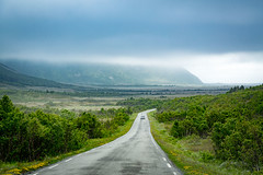 Andøya, Vesterålen Islands, Norge (North Face) Tags: nordland norwegen norway norge islands mountains fog road nebel canon eos 5d mark iii 5d3 24105l landscape summer nature outdoors