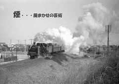 kemuri001 (railbus asano) Tags: steamlocomotives jnr c57 railway white smoke