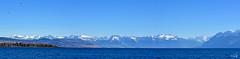 Lac et montagnes (Diegojack) Tags: morges vaud suisse paysages assemblage panorama léman moléson montagnes neige