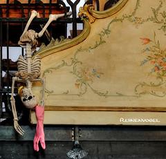 death by cleaning (Ruinenvogel) Tags: skeleton skull skulls creepy death