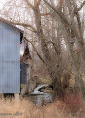 Idyllic (maureen.elliott) Tags: idyllic peaceful barn building rural countyside stream river water ontario brucecounty crumbling old trees foundations waterfall waterflow