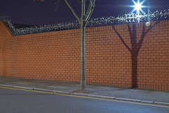 The dreamer by Richard:Fraser - A tree, a wall, razor wire and a star.