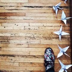Me apellido Guerra busca abrir caminos a la sensibilización de la sociedad hacia las desapariciones forzadas a partir de la memoria.  #esperanza #hope #grullas #grullasdepapel #sembatsuru #千羽鶴 #sickcountry #mexico #teatro #meapellidoguerra (MissWolfAleXxa) Tags: teatro mexico grullas sembatsuru 千羽鶴 meapellidoguerra hope sickcountry esperanza grullasdepapel