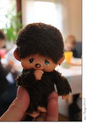 kleiner Gast (Mr.Vamp) Tags: mrvamp vamp kleinergast monchhichi littleguest