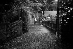 A walk in the park (Leica M6) (stefankamert) Tags: stefankamert park blur blurry bw baw blackandwhite blackwhite noir noiretblanc film analog grain hechingen leica m6 leicam6 summitar kodak trix