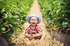 Baby Lewis (Ryan Polei   www.ryanpolei.com) Tags: strawberries babyphotography