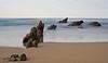 El barquito (pascual 53) Tags: barrika largaexpo mar cantábrico barcos canon 1dmarkiii xabi 50mm