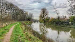 Walk along the river Kromme Rijn in Odijk, Netherlands - 0390