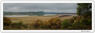 El río Ebro por Chiprana...**Zaragoza**
