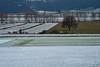 Prima neve a Colfiorito (luporosso) Tags: natura nature naturaleza naturalmente nikon landscape landscapes umbria italia italy neve snow colfiorito country campagna campi alberi trees