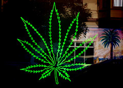 mission walkies, neon in window sign (nolehace) Tags: neon window sign marijuana ganja mission district fall nolehace sanfrancisco fz1000 1217