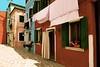 plus blanc que blanc ! (buch.daniele) Tags: burano italie venise ile danielebuch maison houses linge draps couleurs