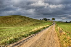 Fall road (Neal J.Wilson) Tags: denmark jylland scandinavia nordic countryroad countrylane roads countryside landscape lane perspective trees fields clouds stormy autumn fall