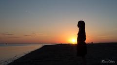 Silhouette, Baie de Somme (Tormod Dalen) Tags: smcpentax2835 anna