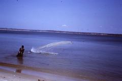 Pesca de tarrafa