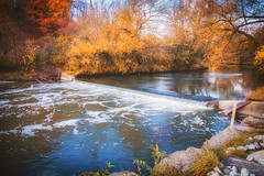 (A Great Capture) Tags: november donriver colourful changing river urbannature leaves trees autumn fall agreatcapture agc wwwagreatcapturecom adjm ash2276 ashleylduffus ald mobilejay jamesmitchell toronto on ontario canada canadian photographer northamerica torontoexplore automne herbst autunno 2017