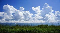 Cloudscape at sunny day (phuong.sg@gmail.com) Tags: atmosphere azure background beautiful beauty blue bright clear climate cloud cloudscape color cumulus day daylight environment fluffy heaven high landscape light meteorology natural nature outdoor scenic season seasonal sky space stratosphere summer sunlight sunny sunshine texture vertical wallpaper weather white