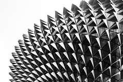 Esplanade (tehroester) Tags: singapore esplanade theatre by bay bw black white architecture pattern abstract contrast nikon d3300 wallpaper lion city building
