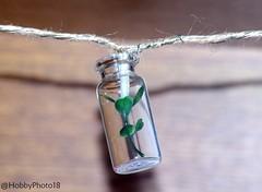 light in jar (hobbyphoto18) Tags: lumière light jar bocal suspension decoration pentaxk50 pentax k50 intérieur corde rope